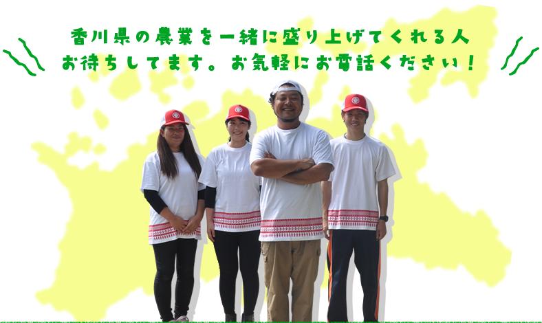 香川県の農業を一緒に盛り上げてくれる人 お待ちしてます。お気軽にお電話ください!