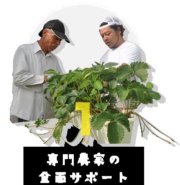 専門農家の全面サポート