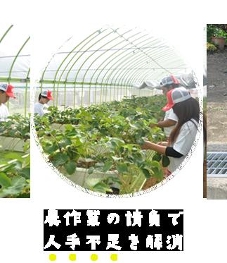 農作業の請負で人手不足を解消