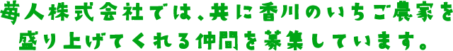 苺人株式会社では、共に香川のいちご農家を盛り上げてくれる仲間を募集しています。